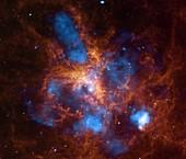 Tarantula Nebula,composite image