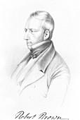 Robert Brown,Scottish botanist