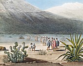 Humboldt in the Andes,1802