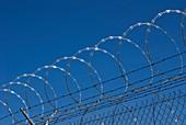 Razor wire fence in Las Vegas