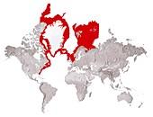 Greenland shark habitat,artwork