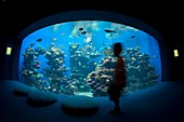 Aquarium,Mallorca