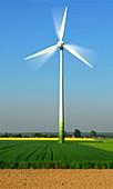 Wind turbine,artwork