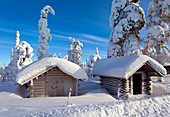 Huts in forest after heavy snowfall