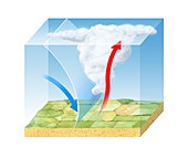 Cold front cloud formation,diagram