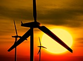 Wind turbines and the Sun,artwork