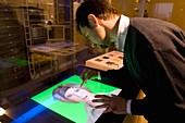 3D virtual avatar construction