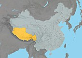 Tibet,China,relief map