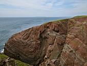 Folded Old Red Sandstone,Pembrokeshire,
