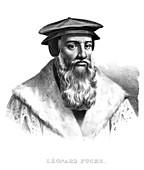 Leonhart Fuchs,German botanist