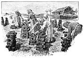 Workers drying peat,artwork