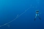 Diver gathering fishing long line