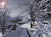 Winter on Exmoor