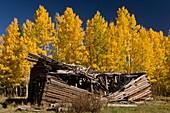 Ruined shacks,USA
