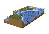 North-western Atlantic,bathymetry model
