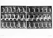 Muybridge motion study,1907