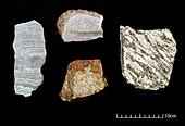 Specimens of oldest rocks on Earth