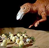 Maiasaura dinosaur nest,museum model