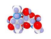 Chitin,molecular model