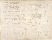 Notes by Leonardo da Vinci,Codex Arundel
