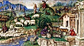 Pastoral scenes,15th century