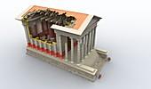 Roman temple,artwork