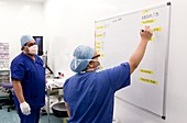 Surgeon writing notes on a whiteboard