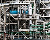 Oilseed processing plant