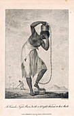 A negro slave