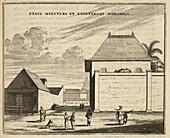 Houses,Batavia