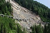 Landslide damage,Austrian Alps