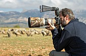 Wildlife photographer Nicolas Reusens