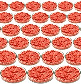 Cultured meat product,conceptual image