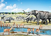 Pliocene fauna,artwork