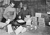 Packing Antarctic sledging rations,1912