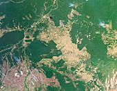 Deforestation in the Amazon,2009