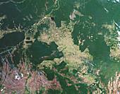 Deforestation in the Amazon,2012