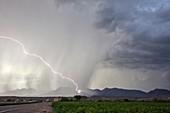 Diagonal lightning strike,Arizona,USA
