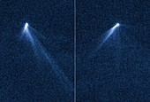 Multi-tailed asteroid P 2013 P5