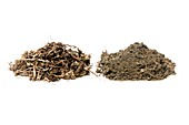 Samples of leaf mould and turf loam