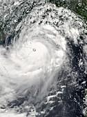 Typhoon Rammasun,2014