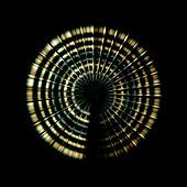Cuban Solitaire,wavelet graph