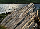 Glacial striations,Snowdonia,Wales