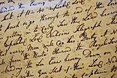 Nelson's log book
