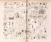 Aztec Migration,historical artwork