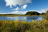 Lac de Bourdouze,France