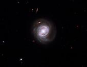 Active galaxy Markarian 817,HST image