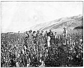 Opium farming in Persia,19th century