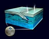 Surface movement on Europa,illustration