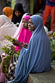 Women selling Chat in the Harar Market